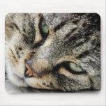 Cara del gato alfombrilla de ratones