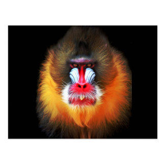 cara del mono postal