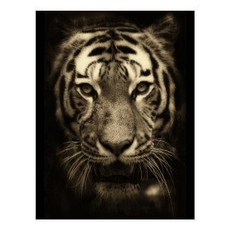 Cara del tigre el gruñir en tonos de la sepia postal