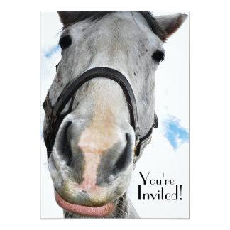 Cara divertida del caballo para el fiesta o el invitación 12,7 x 17,8 cm