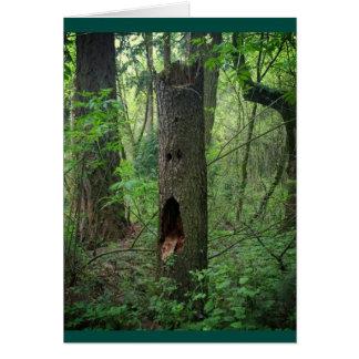 Cara en un árbol tarjeta de felicitación