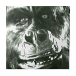 Cara grande del mono azulejo