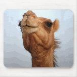 Cara Mousepad del camello Tapete De Ratones