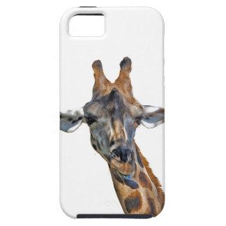 Carcasa de móvil con Jirafa iPhone 5 Carcasa