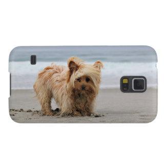Carcasa Galaxy S5 Farris - Lucy - raza mezclada
