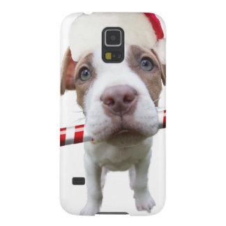 Carcasa Para Galasy S5 Pitbull del navidad - pitbull de santa - perro de