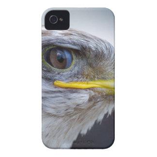 Carcasa Para iPhone 4 Blanco y retrato de Brown Eagle
