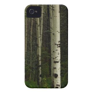 Carcasa Para iPhone 4 Bosque blanco
