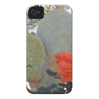 Carcasa Para iPhone 4 Cactus subió