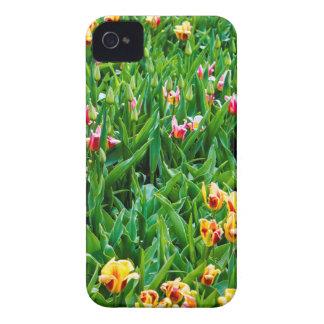 Carcasa Para iPhone 4 Campo con los tulipanes rosados y amarillos