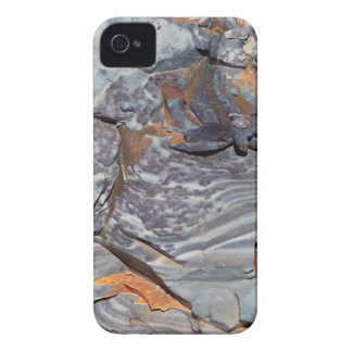 Carcasa Para iPhone 4 De Case-Mate Capas naturales de ágata en una piedra arenisca