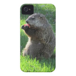 Carcasa Para iPhone 4 De Case-Mate Consumición de Groundhog