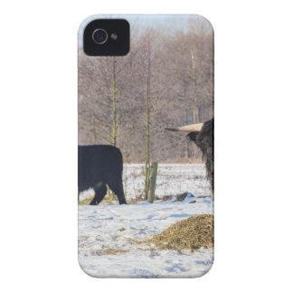 Carcasa Para iPhone 4 De Case-Mate Montañeses escoceses negros en nieve del invierno