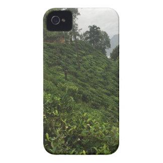 Carcasa Para iPhone 4 De Case-Mate Plantación de té