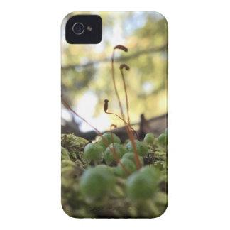 Carcasa Para iPhone 4 De Case-Mate Tolerancia cubierta de musgo