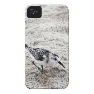Carcasa Para iPhone 4 De Case-Mate Un pájaro joven del chorlito nevado