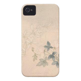 Carcasa Para iPhone 4 Estudio 2 de la flor - YUN Bing (chino)