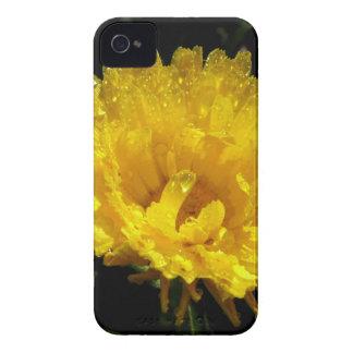 Carcasa Para iPhone 4 Oro del Calendula