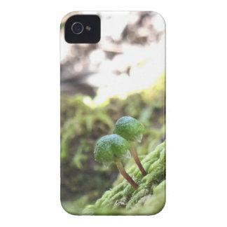 Carcasa Para iPhone 4 Paraguas del Bryophyta