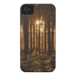 Carcasa Para iPhone 4 Vista de árboles negros y de Sun