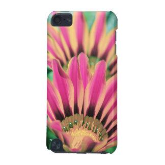 Carcasa Para iPod Touch 5 Margarita de las rosas fuertes