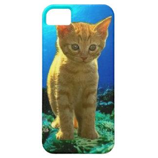 Carcasas iPhone 5 modelo gato en el fondo marino iPhone 5 Carcasas