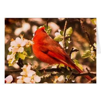 Cardenal en cumpleaños de los flores de Apple Tarjeta De Felicitación