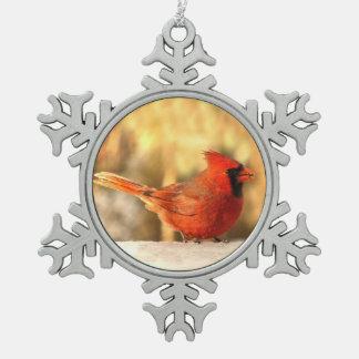 Cardenal en el ornamento del otoño adorno