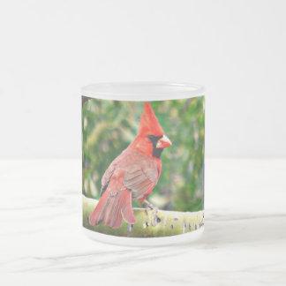 Cardenal en una taza del vidrio esmerilado del