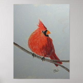 Cardenal rojo en rama en pasteles póster