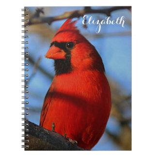 Cardenal septentrional cuaderno