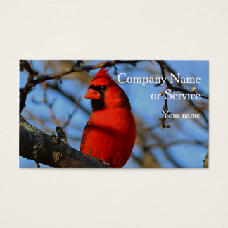 Cardenal septentrional tarjeta de visita