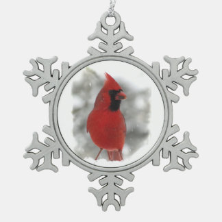 Cardinal Adorno