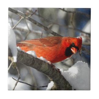 Cardinal Azulejo De Cerámica