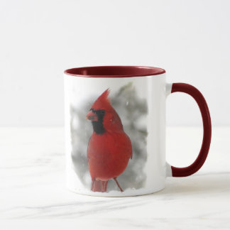 Cardinal Taza