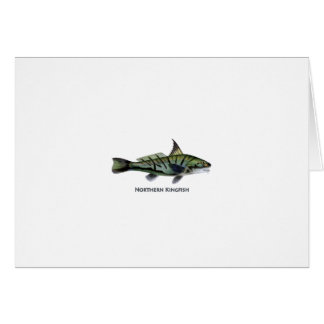 Carita septentrional - Roundhead - pescadillas Tarjeton