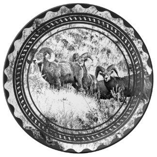 Carneros con grandes cuernos del barranco de plato de porcelana