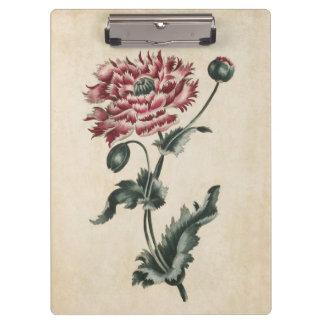 Carpeta De Pinza Ejemplo floral botánico de la amapola del vintage