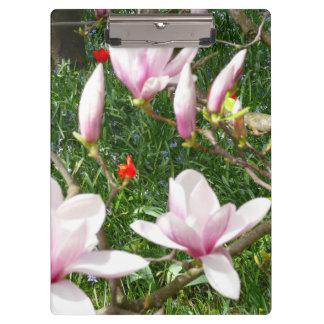 Carpeta De Pinza Magnolia rosada floreciente 01