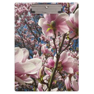 Carpeta De Pinza Magnolia salvaje 02