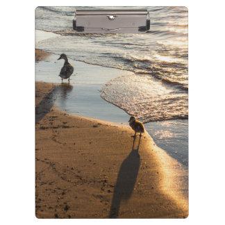 Carpeta De Pinza Paseo de la puesta del sol con la mamá