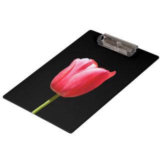 Carpeta De Pinza Solo encanto del tulipán