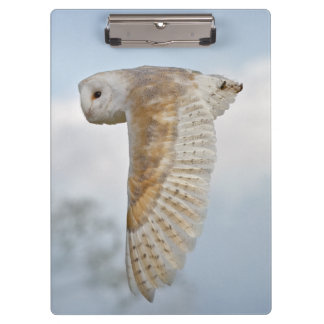 Carpeta De Pinza Tablero de clip de la lechuza común en vuelo