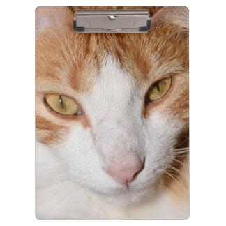 Carpeta De Pinza Tablero de clip fresco del gato - el naranja es el