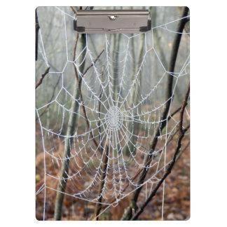Carpeta De Pinza Web del tablero europeo de la araña de jardín
