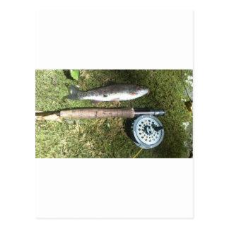 carrete de la trucha arco iris y de la pesca con postal