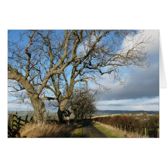 """Carretera nacional"" Northumberland Inglaterra Tarjeta De Felicitación"