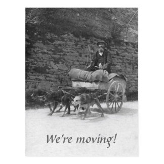 Carro del perro con la mudanza barbuda del hombre postal