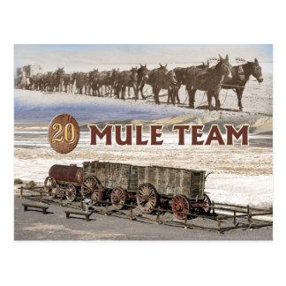 carros del equipo de la Veinte-mula, Death Valley, Postal