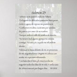 Cártel de Salmos 23 Posters